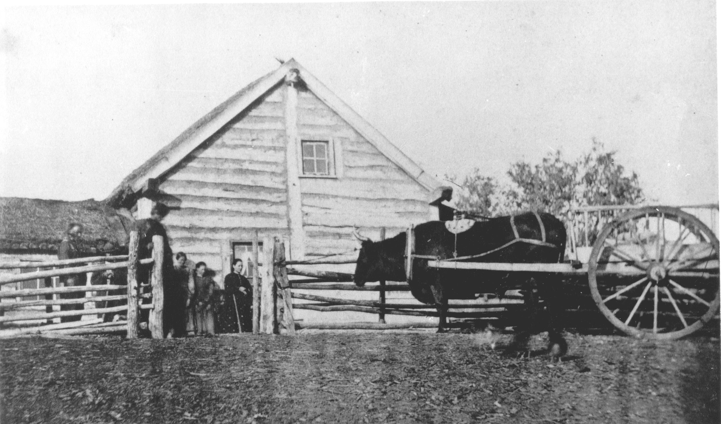 1880s Ox cart & Metis log home