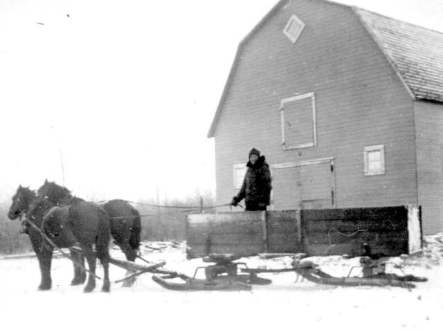 Anton Chorney - hauling in winter 1941