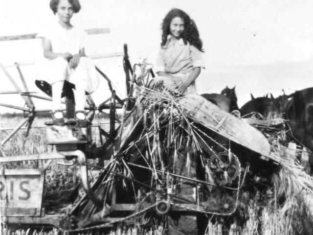 Binder - Oastler girls on their Massey Harris Binder