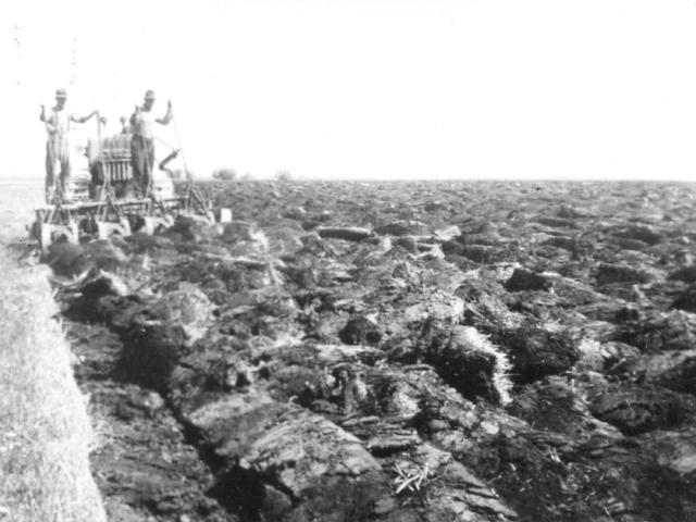Breaking land - Jacob Jonasson breaking marsh land with 8 bottom plow