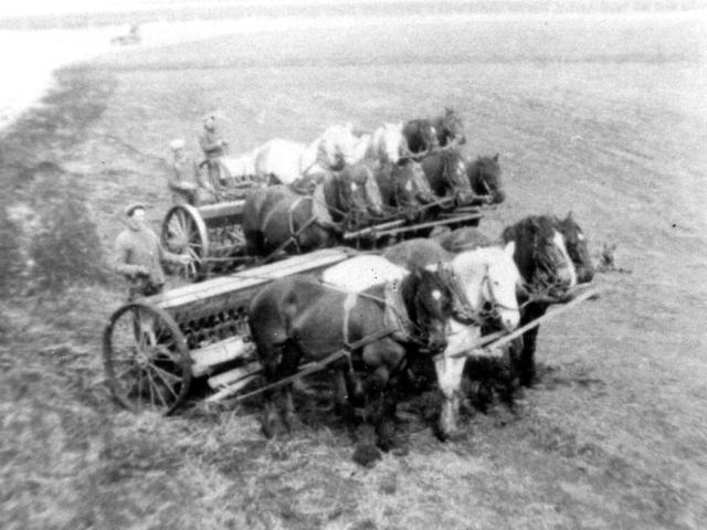 Chorney boys seeding 1935