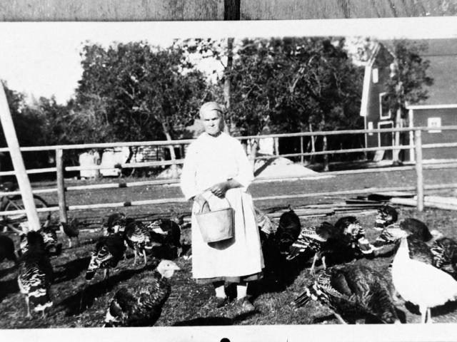 Eva Rokosh feeding her turkeys - 1930