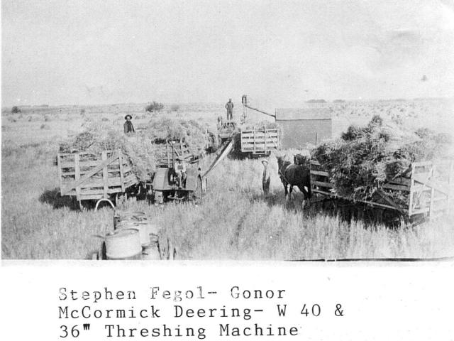 Harvesting & Fegol Threshing unit