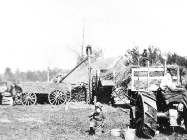 Harvesting - Horanski threshing