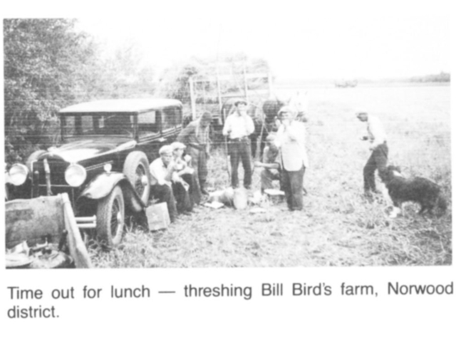 Harvesting - Lunch time