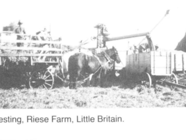 Harvesting - Riese farm