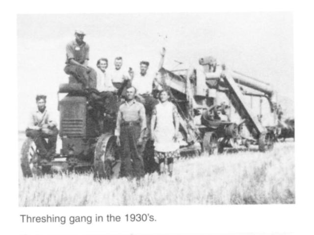 Harvesting & Threshing gang 1930s