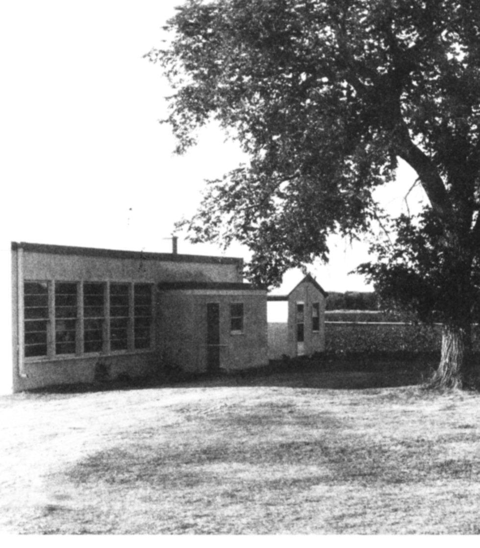 Kitchener new school
