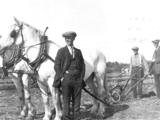 Market Gardening - Gordon Nelson on plow