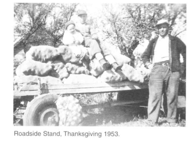 Market gardening - Road side, Thanksgiving