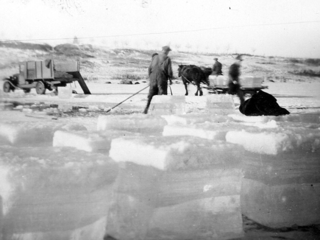 Putting up ice for Skinne's refrigeration at Lockport 1935