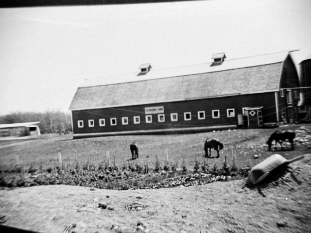 Sifton Farms horse barns on Henderson Highway