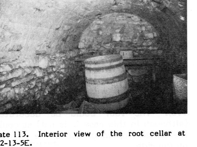 Root Cellar