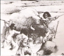 Larter people used all parts of the bison