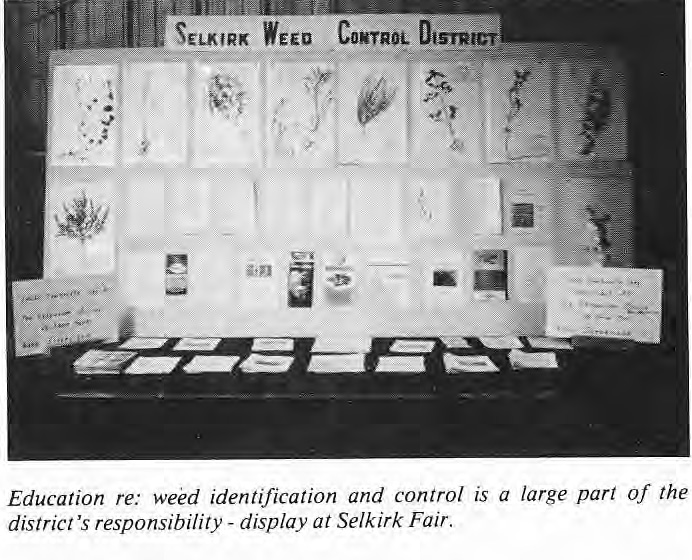 Weed Education Display