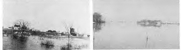 Baldwin House at Cook's Creek in the 1920's   Heckert's on St. Peters road, 1948