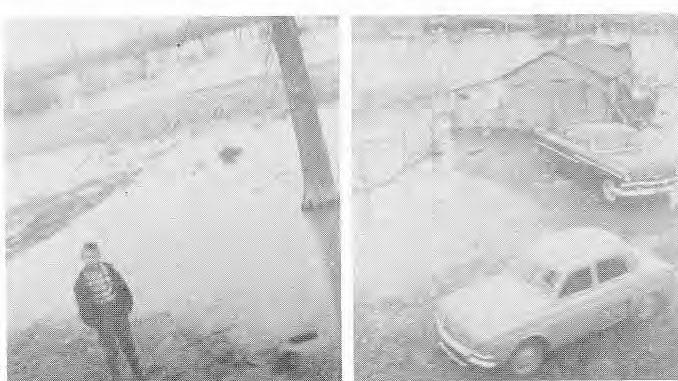 M. leftruck's front yard, tom Molitowsky in yard, 1960 N. Leftruck's yard, 1960