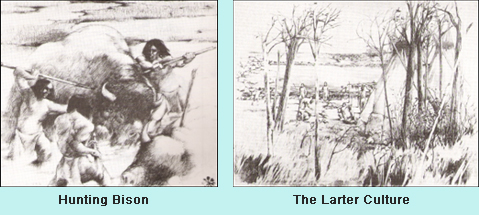 Drawing of bison hunters and scenes from the Larter culture